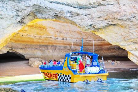 Caves And Dolphin Watching Cruise