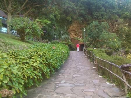 Caves Vulcânicas São Vicente Na Ilha Da Madeira