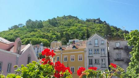 Sintra Tour With Wine Tasting And Pena