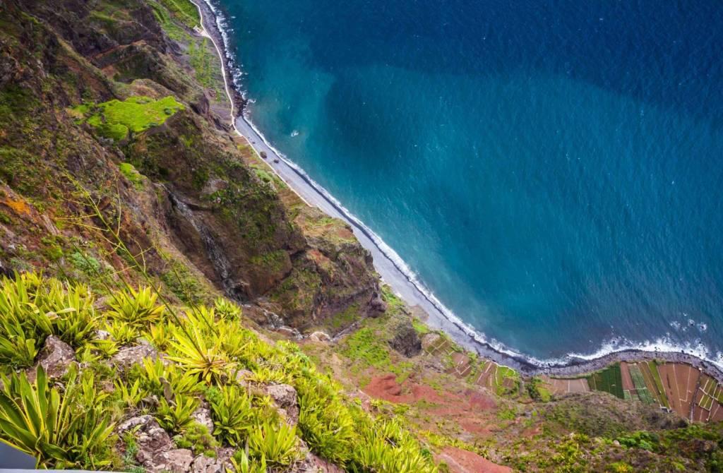 Voltar a Ilha da Madeira