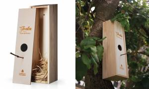 Box of wine that serves as nest for Chapim