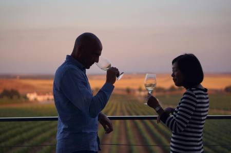 Expérience Régionale – Snacks Traditionnels, Dégustation De Vin Et Visite À La Cave Et Au Vignoble