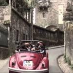 Beetle at Sintra