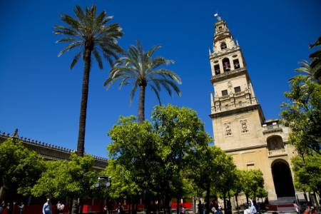 Córdoba: 3-Hour Official Tour