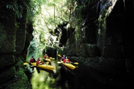 Tauranga Scenic Mclaren Lake - Kayak Tour