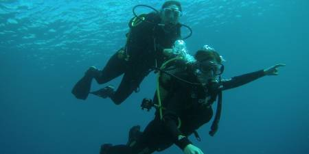 Try Diving In The Sea - Tenerife