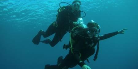 Plongée Baptême En Mars – Tenerife