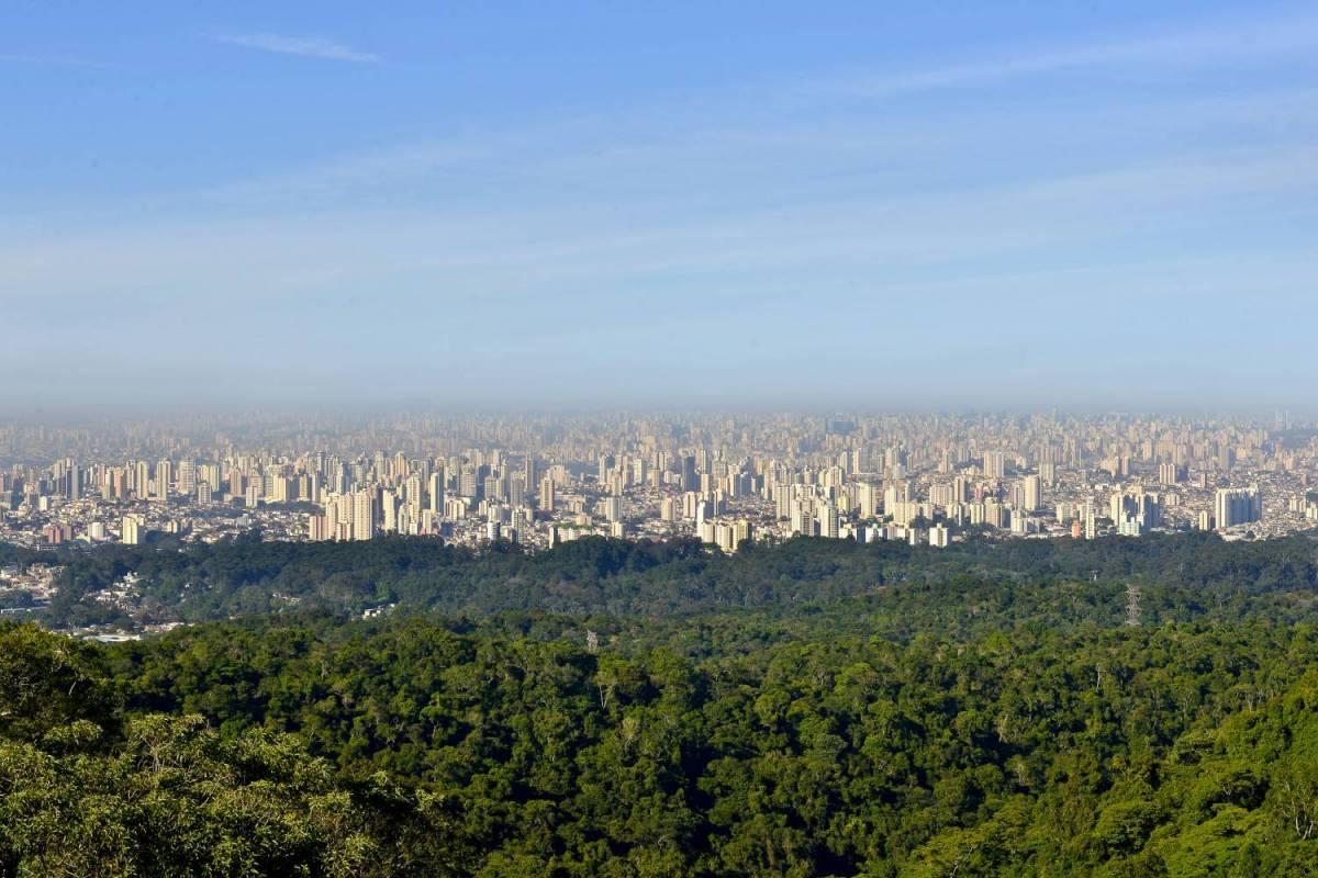 Passeio Ecológico Em São Paulo