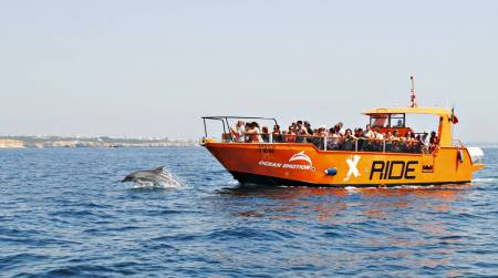 Dolphins and Caves Cruise Tour in Albufeira