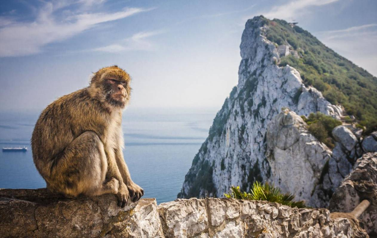Gibraltar And Bolonia Private Day Trip From Cádiz