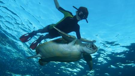 Los Abrigos: Snorkeling Route With Photographic Session In Tenerife