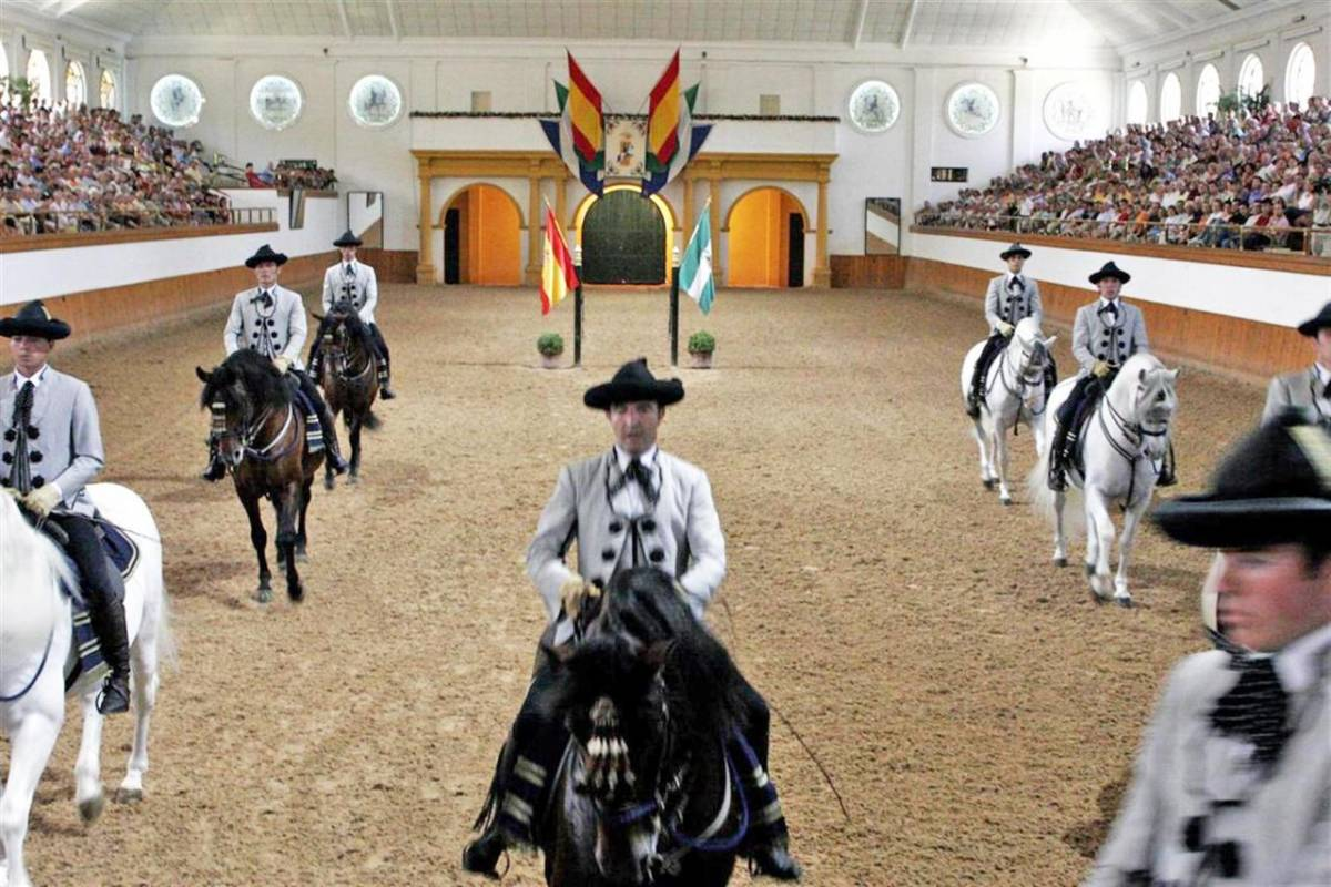 From Cádiz: Private Day Trip To Jerez With Horse Show & Sherry Winery