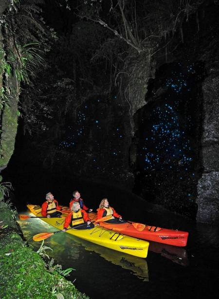 Glow Worm Evening Kayak Tour – Tauranga
