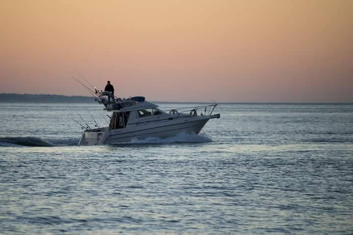 Bottom Fishing Excursion - Alvor