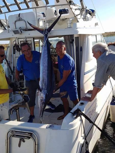 Big Game Fishing – Alvor