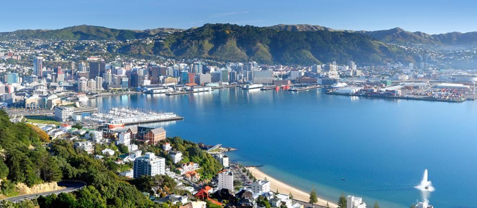 Wellington Half Day Tour - New Zealand