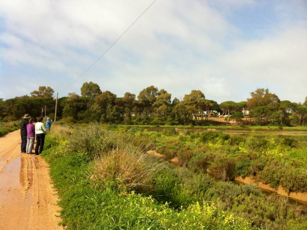 Guided Walk In The Algarve's Ria Formosa