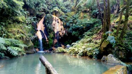 Guided Tour To The Furnas And Lake Of Fire In São Miguel Island Of Azores