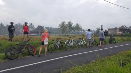 Ubud Electric Bike Tour To Tegallalang Rice Terraces – Bali