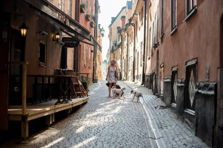 Stockholm Old Town Walk (Public) (Sto)
