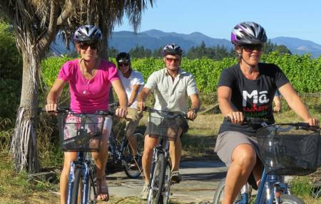 Full Day Guided Biking Wine Tour - Blenheim - New Zealand