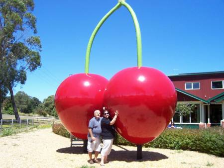 Food And Wine Tasting Tour In Northern Tasmania