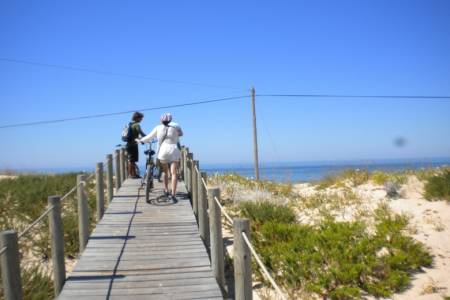 Faro: 3-Hour Bike Tour In The Ria Formosa National Park & Island Of Faro