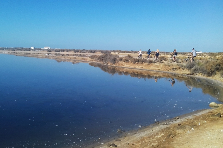 Cycling In The Ria Formosa