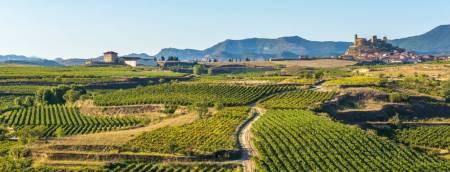 Penedès Wine Region