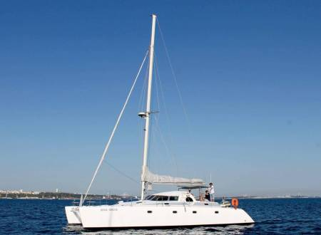 From Setúbal: 3 Hours Private Dolphin Watching Tour On A Sailing Catamaran