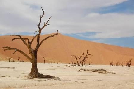 3 Tage Camping In Der Namibischen Wüste Und Safari