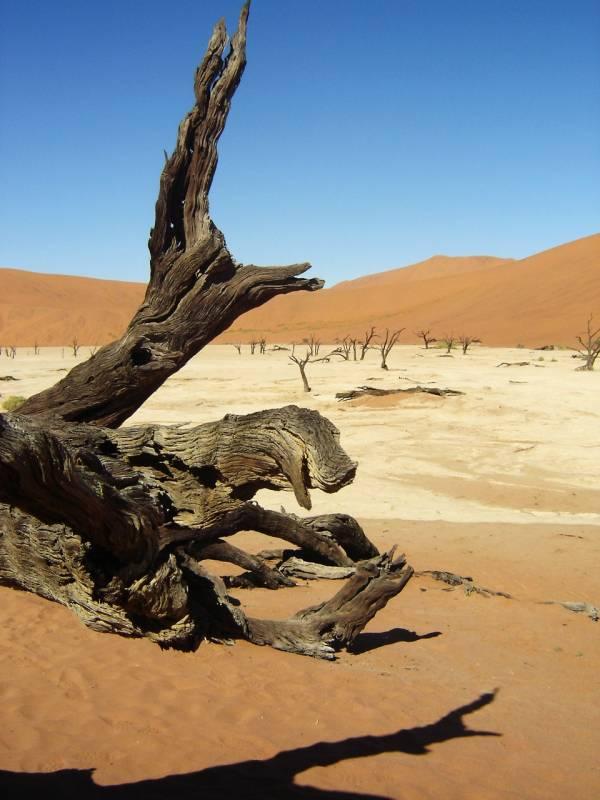 Namib Desert Camping Safari