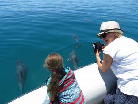 Kangaroo Island Ocean Safari, 75 Minutos De Safari En El Ocean
