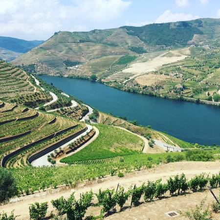 From Porto: Visit To Douro Valley With River Cruise, Lunch & Wine Tasting In Vineyards