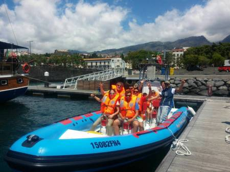 Madeira Island: Whale And Dolphin Watching Boat Tour In Funchal