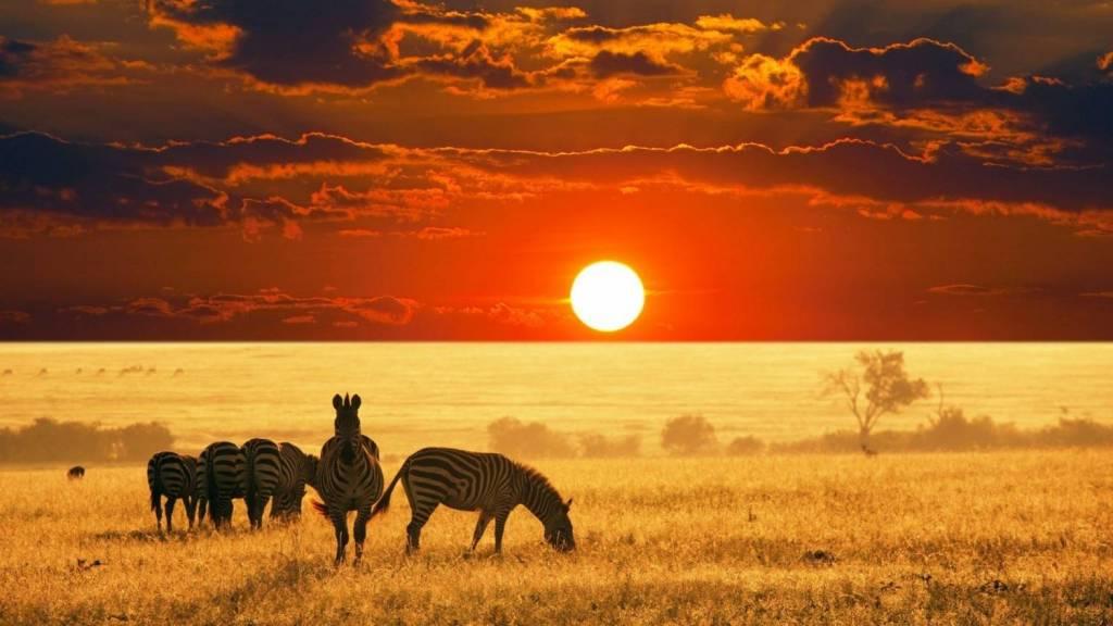 Go back to Namibia