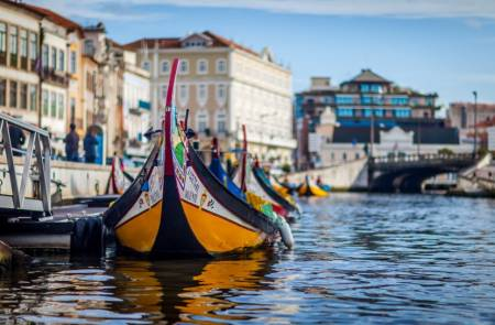 Aveiro Private Tour With Moliceiro Cruise