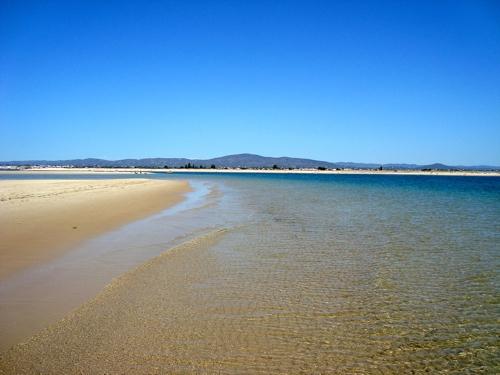 Olhão Algarve Ria Formosa
