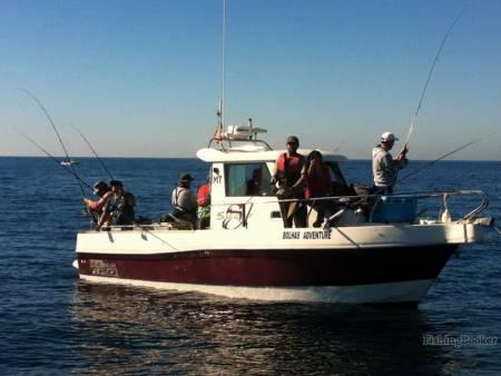 Reef Fishing - Sesimbra