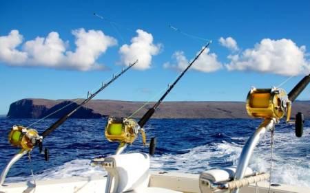 Reef Fishing – Albufeira Algarve Portugal