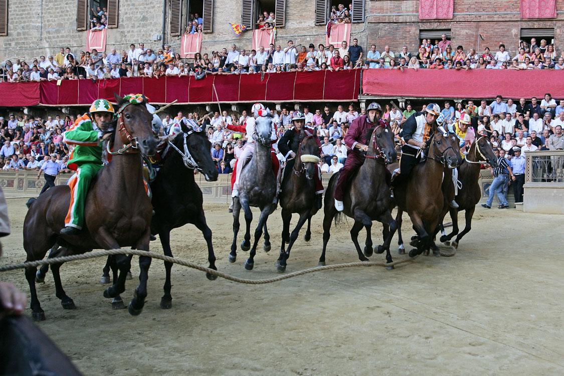 Siena Palio horse race