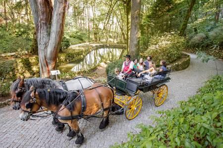 Sintra Tour + Horse Carriage Tour