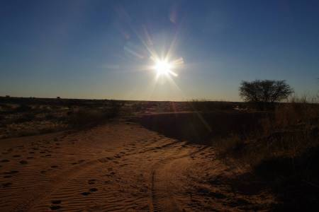 7-Day Safari Trip In The Southern Swing Of Namibia