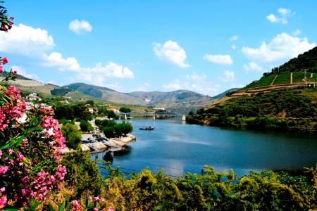 Douro The Valley Of Port Wine