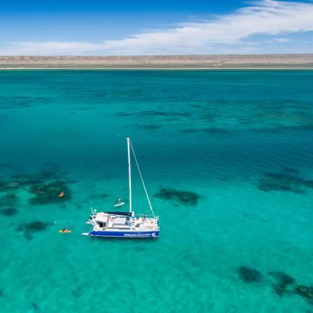 Ningaloo Walhai Schwimmen & Eco-Tour Auf Einem Segel-Katamaran (Zwischensaison) – Australia