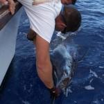 Big Game Fishing In Ponta Delgada - Azores