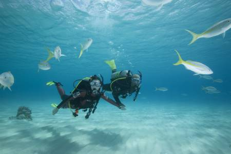 Discover Scuba Diving, Iniciantes, Puerto Rico – Las Palmas