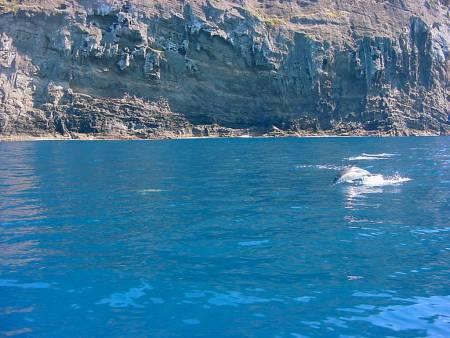 Hawaiian Canoe Tour On The Island Of Terceira, Azores