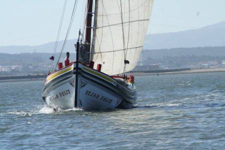 Lisbon: 2-Hour Sunset Cruise In The Tagus River On Traditional Boat