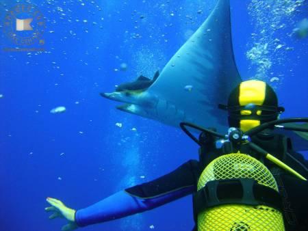 10 Scuba Diving Pack, São Miguel Island, Azores